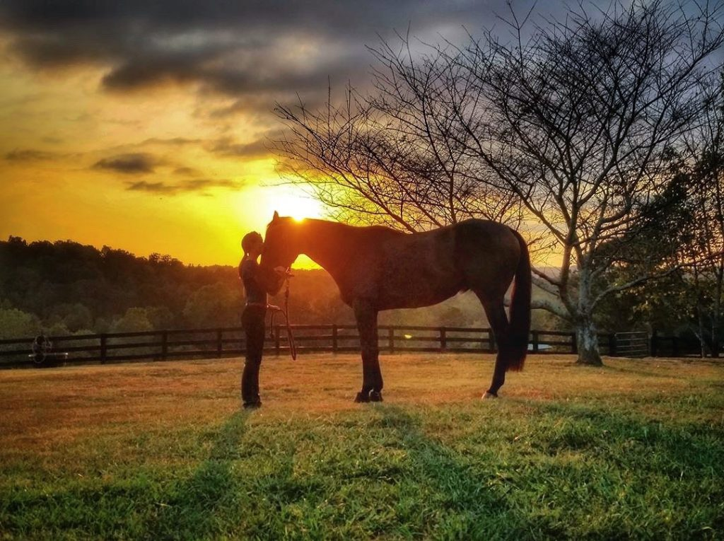 Claire McCown and her horse in a pasture at sundown